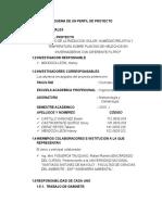 PERFIL-DE-PROYECTO-METEOROLOGÍA.docx