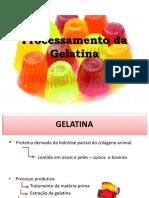 Processamento Da Gelatina-slide