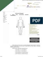 Zone-Reflexogene.pdf