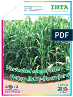 Brochure Sorgo INTA-Forrajero 2013