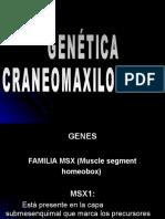 Unidad 15 Genética Cráneomaxilar