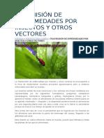 Ransmisión de Enfermedades Por Insectos y Otros Vectores