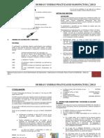 Material Normas y Bpm 2013