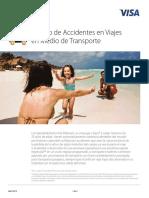 VISAPLATINUM Travel Accident Insurance