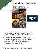 1.1 Cultura Indígena