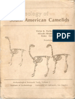 The Osteology of  American South (Ingles)