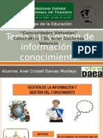 Gestión de Información y Conocimiento.