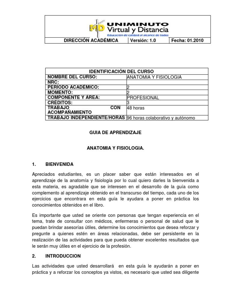 Contemporáneo Anatomía Y Fisiología Juegos De Aprendizaje Festooning ...