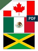 World Flag Match