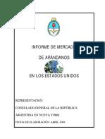Informe de Arandanos 2008