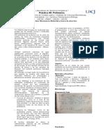 Quimcia Inorgánica I. Polimeros con BORAX