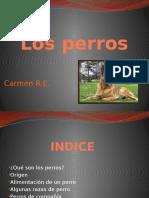 losperros-130623062638-phpapp01