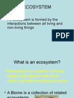 ecosystem final.ppt