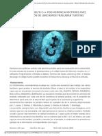 Ejercicio resuelto c++ POO Herencia Vectores MVC
