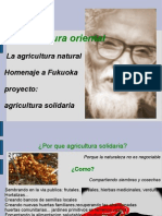 agricultura solidaria