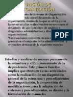FUNCIÓN DE ORGANIZACIÓN