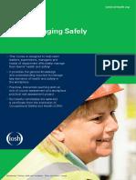 IOSH Managing Safely Factsheet Low Res-1