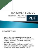 Tentamen Suicide