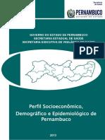 Perfil Pe 2013