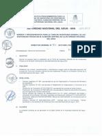 Directiva ANA