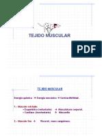 Clase-Tejido_Muscular