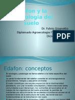 Edafon y la bioecologia del suelo.pptx