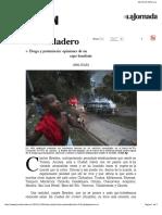 Aviles, Jaime (2010), Desfiladero. Droga y Postmiseria. Opiniones de Un Capo Brasileño
