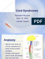 2007 04 12-Sacks-Spinal Cord Syndromes