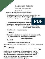 """Clasificaciã""""n de Las Enzimas"""