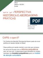 02- CAPS- Perspectiva histórica e abordagens práticas.pptx
