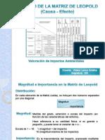 Matriz de Leopold - Copia