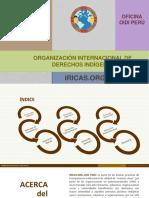 Informe Institucional Anual OIDI Perú- IRICAS.ORG 2015
