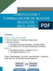 ConstitucionFormalizacion-HEYNER