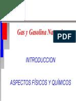 Gas y Gasolina Natural
