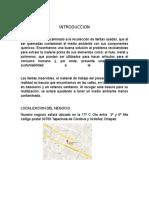 Introduccion.docx  Nieto