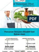 Mustakim Masnur-bioaktif tanaman obat.ppt