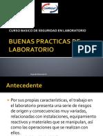 SNA-acr-01PVer10.pdf