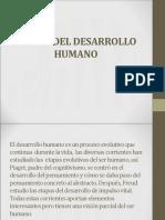 Etapas Del Desarrollo Humano Clase 3