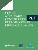 Mecanismos protección derechos humanos