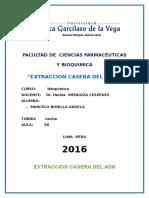Bioquimica 1 Extraccion Casera Del Adn