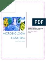 Aislamiento, Identificación y Selección de Cepas Productoras de Metabolitos