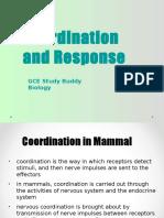 Response&Coordination