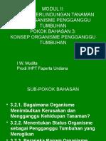 Modul2 Pb3, Konsep OPT