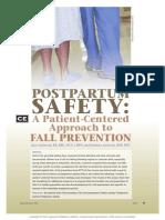 Postpartum Safety