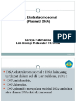 Plasmid DNA.ppt