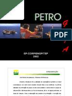 Petroguia 2002