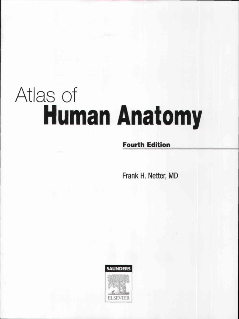 Atlas Human Anatomy Ciba Netter | Vertebra | Human Head And Neck