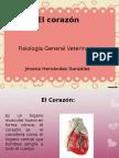 corazojn-110930215435-phpapp02