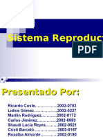 Presentacion de Sistema Reproductor Terminada