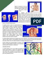 Conferencia 4.pdf